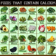 Plant based foods that contain calcium