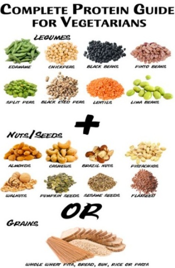 Blog_Sports_Protein_Vegetarian-Protein-Combining_JPEG
